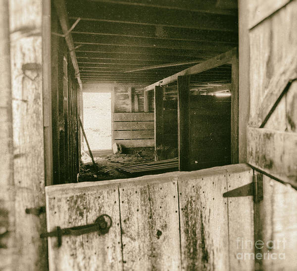 Wall Art - Photograph - Through The Barn Door by Pam  Holdsworth