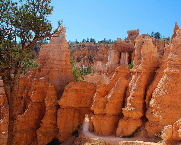 Photograph - Through The Hoodoos by Jemmy Archer