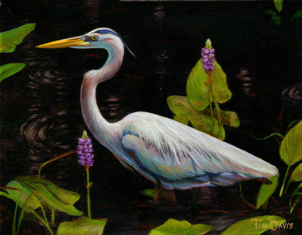 Everglades Painting - Through The Pickerelweed by Tim Davis