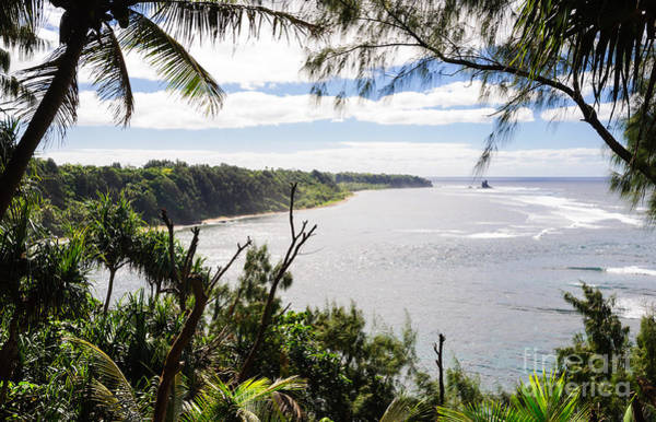 Photograph - Through The Trees - A Remote Coastline On A Tropical Island by David Hill