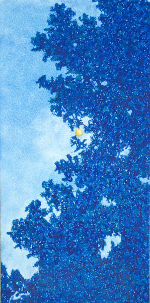 Soothing Drawing - Through The Trees At Night With Moon by Michele Fritz