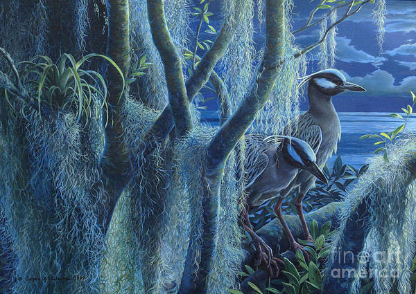 Roost Painting - Through The Watches Of The Night ... Yellow Crowned Night Herons by Susan A Walton
