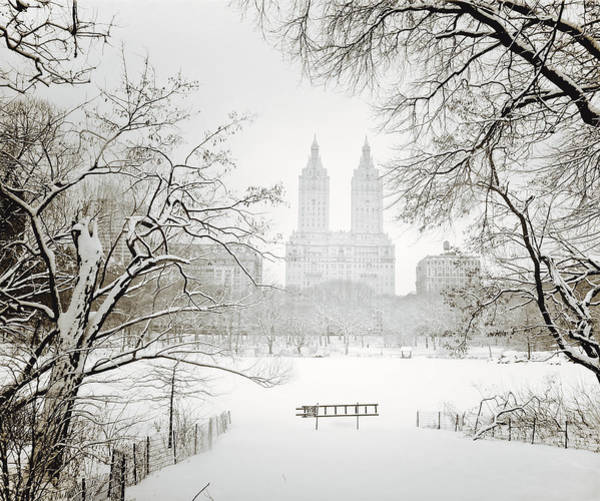 Winter Photograph - Through Winter Trees - Central Park - New York City by Vivienne Gucwa