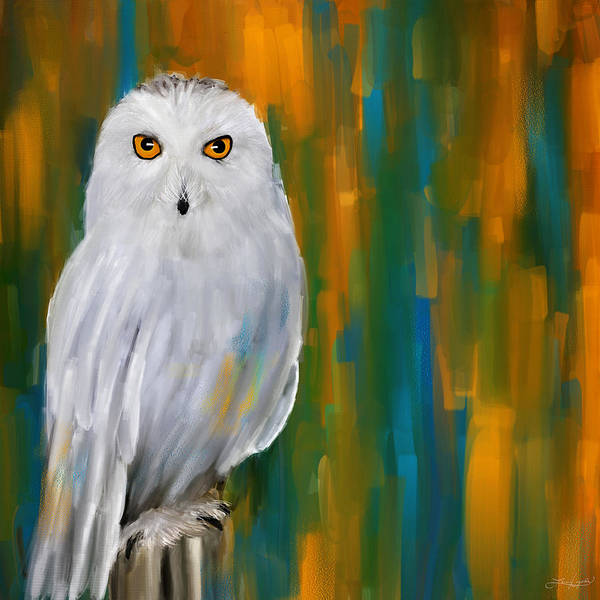 Barn Owl Painting - Through Your Eyes by Lourry Legarde