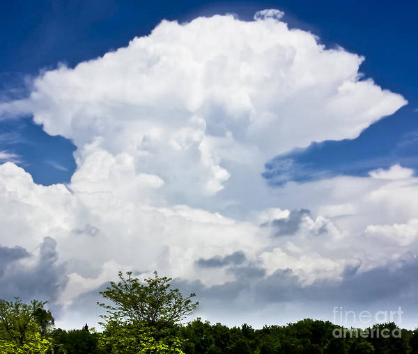 Photograph - Thunderhead by Ricky L Jones