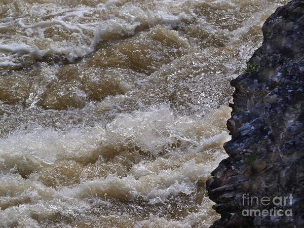 Photograph - Thundering River by Vivian Martin
