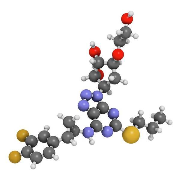 Pharma Wall Art - Photograph - Ticagrelor Platelet Inhibitor Drug by Molekuul
