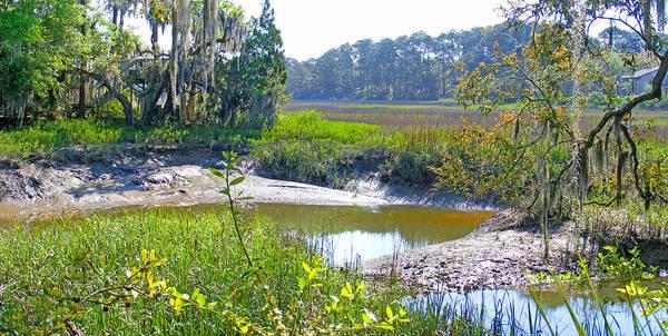 Photograph - Tidal Creek In The Savannah by Duane McCullough