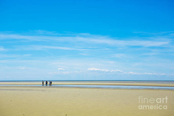 Wall Art - Photograph - Tidal Flats Of Cape Cod by Diane Diederich