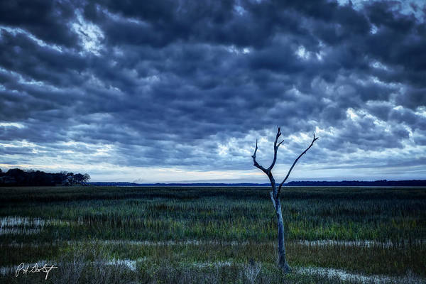 Lowcountry Digital Art - Tidal Marsh View by Phill Doherty