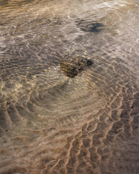 Photograph - Tidal Pool 3 by Trever Miller