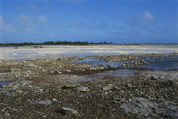 Andros Photograph - Tide Flats, Bahamas by Carleton Ray