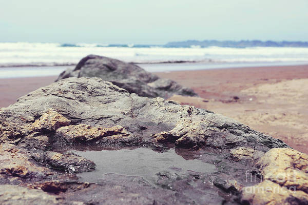 Photograph - Tide Pool by Cindy Garber Iverson