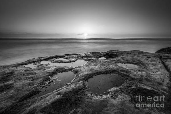 Reverse Wall Art - Photograph - Tide Pool Sunset Bw by Michael Ver Sprill