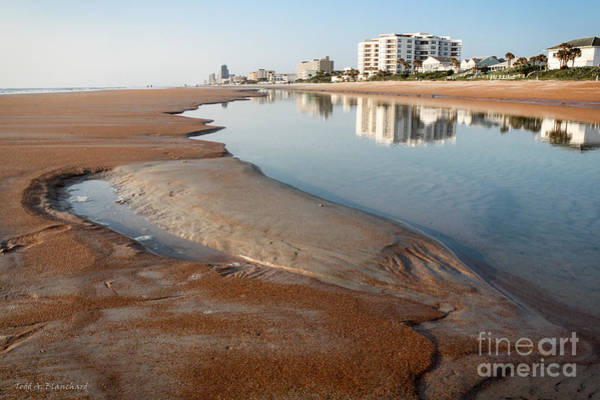 Ormond Photograph - Tide Pool by Todd Blanchard