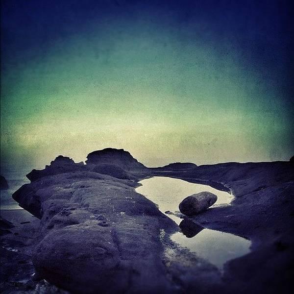 Wall Art - Photograph - Tide Pools by Jill Battaglia
