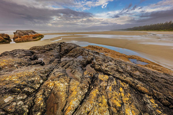 Wall Art - Photograph - Tide Pools, Pacific Rim National Park by Chuck Haney