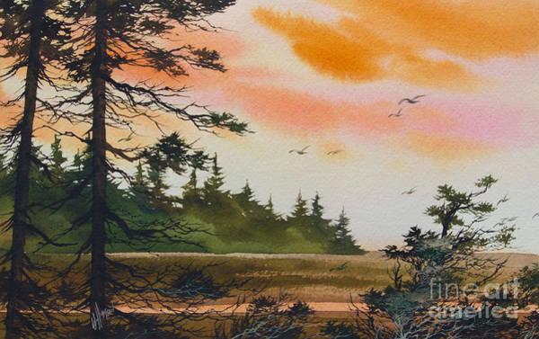 Oak Harbor Painting - Tideland Dawn by James Williamson