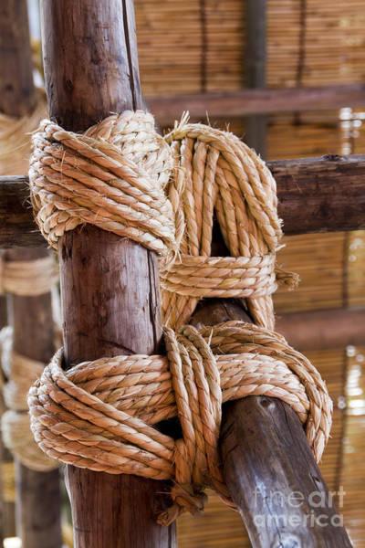 Photograph - Tie Rope by Tad Kanazaki