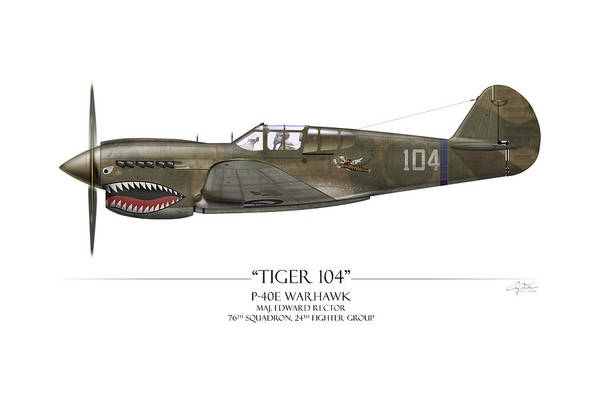 Volunteer Wall Art - Painting - Tiger 104 P-40 Warhawk - White Background by Craig Tinder