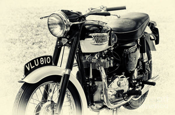 Photograph - Tiger T110 Motorcycle by Tim Gainey