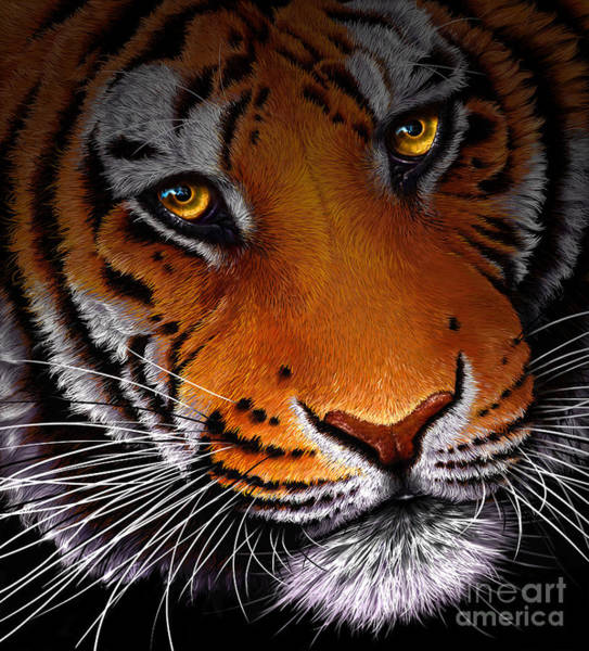 Wall Art - Digital Art - Tiger Classic by Jurek Zamoyski