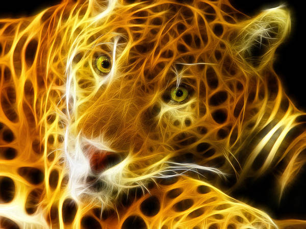 Tiger Digital Art - Tiger Face  by Mark Ashkenazi