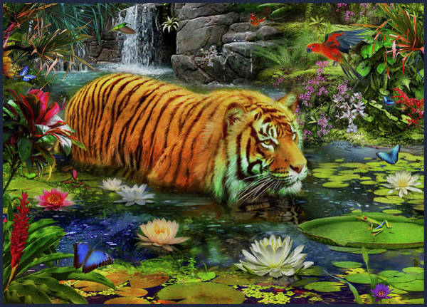 Wall Art - Drawing - Tiger In Water by MGL Meiklejohn Graphics Licensing