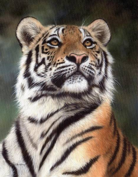 Big Cat Wall Art - Painting - Tiger Painting by Rachel Stribbling
