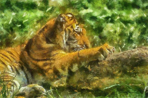 Wall Art - Photograph - Tiger Photo Art 01 by Thomas Woolworth