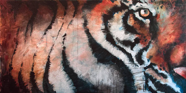 Painting - Tiger by Sean Parnell