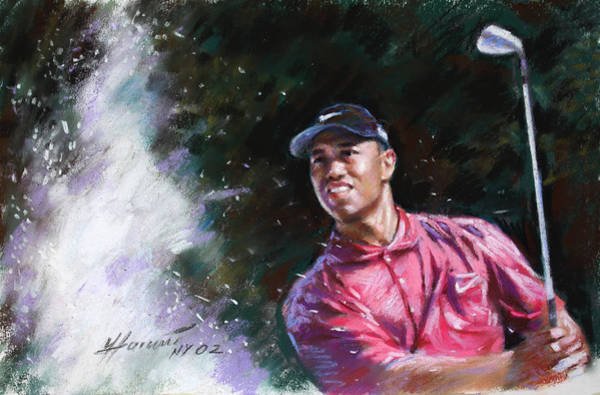 Woods Drawing - Tiger Woods  by Viola El
