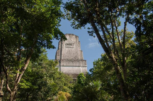 Photograph - Tikal Pyramid 4b by Michael Bessler