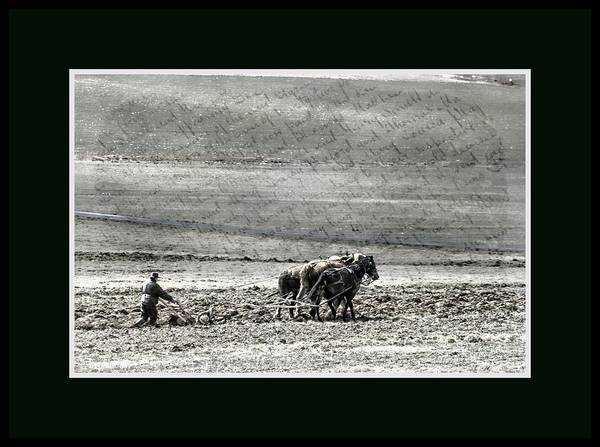 Photograph - Tilling The Soil by Alice Gipson