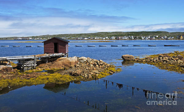 Wall Art - Photograph - Tilting Harbour.. by Nina Stavlund