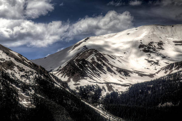 Wall Art - Photograph - Timberline by William Wetmore