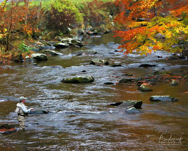 Brook Mixed Media - Time Flies  Fly Fishing Smokey Mountains Tennessee by Robin Lewis