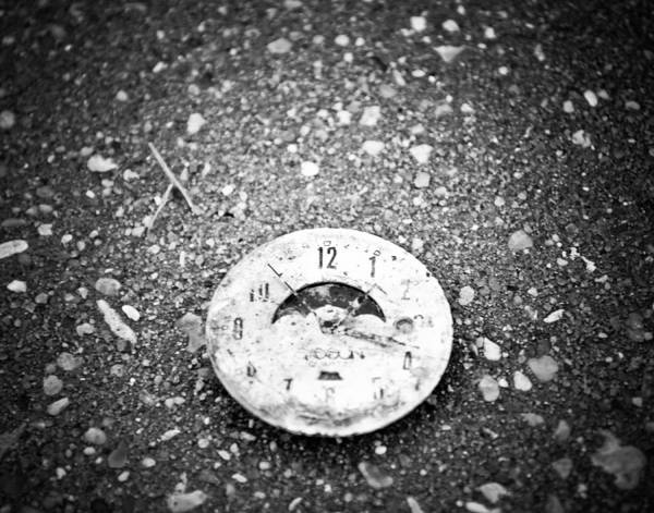 Photograph - Time Is Fleeting by Maggy Marsh