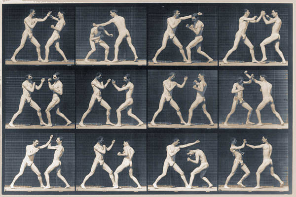 Painting - Time Lapse Motion Study Men Boxing by Tony Rubino