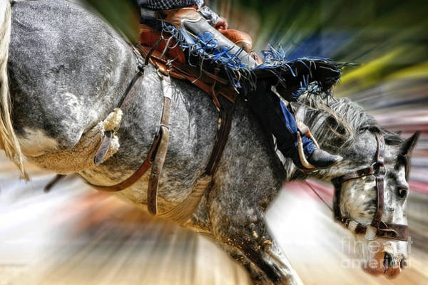 Photograph - Time To Saddle Bronc by Lincoln Rogers