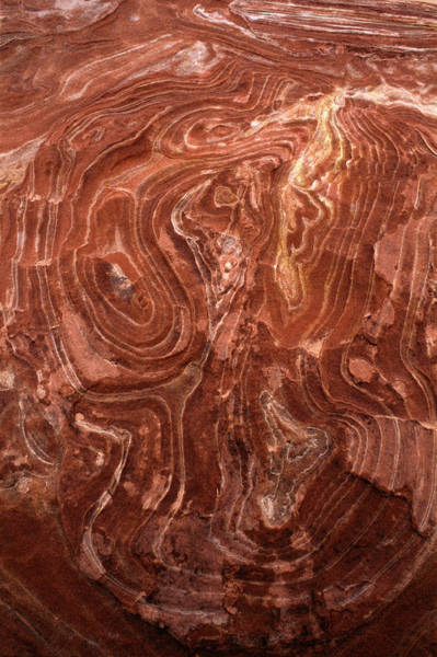 Erode Photograph - Time Worn Ceiling Of A Red Rock Niche by Jerry Ginsberg