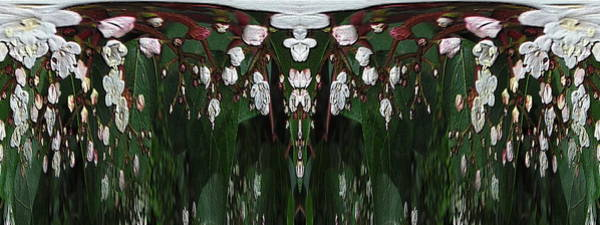 Wall Art - Digital Art - Tiny Floral Unleashed by Tim Allen