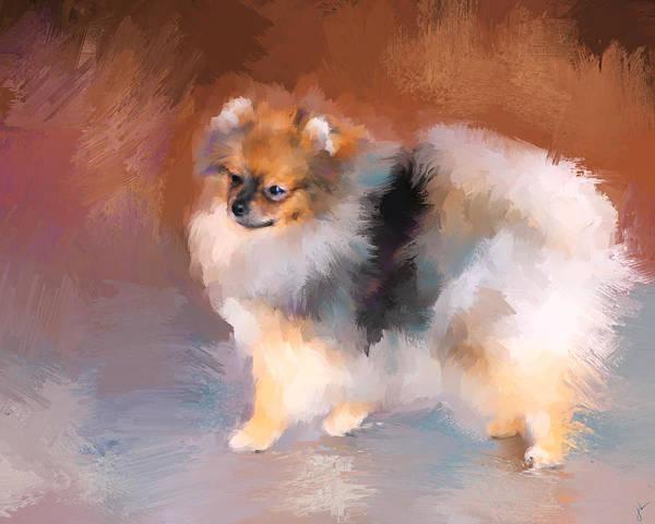 Pomeranian Painting - Tiny Pomeranian by Jai Johnson