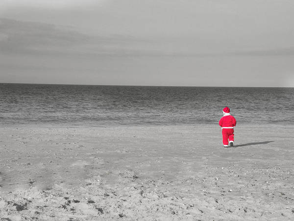 Photograph - Tiny Santa by Trish Tritz