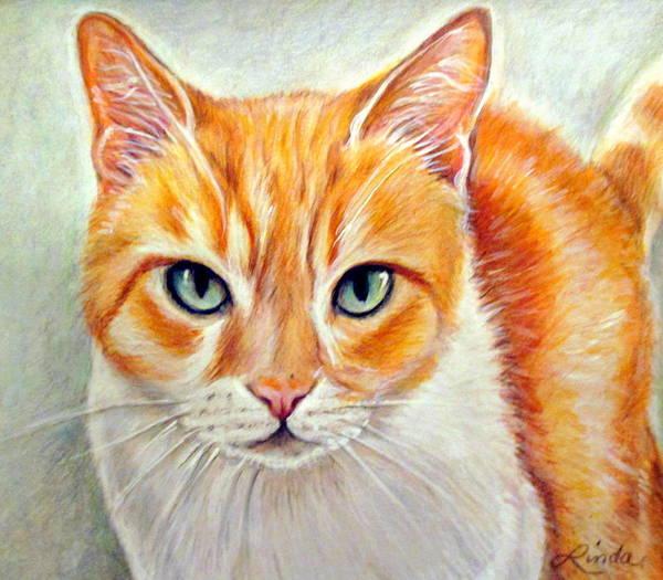 Orange Tabby Drawing - Tippy by Linda Nielsen