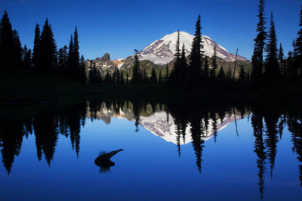 Mount Rainier Photograph - Tipsoo Sunrise by Mark Kiver
