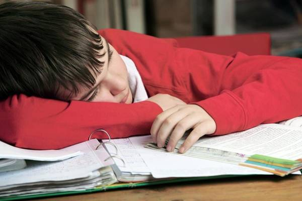Classroom Photograph - Tired Boy Asleep On His Homework by Mauro Fermariello/science Photo Library