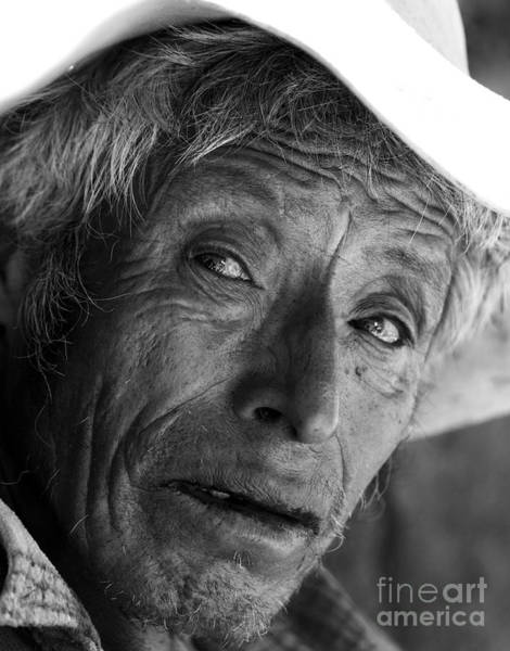 Photograph - Tired Old Man by James Brunker