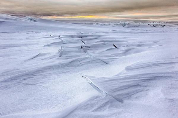 Canon Eos 6d Photograph - Titan by Jakub Sisak