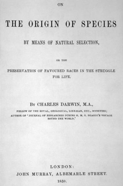 Wall Art - Drawing - Title-page Of Charles Darwin's by Mary Evans Picture Library